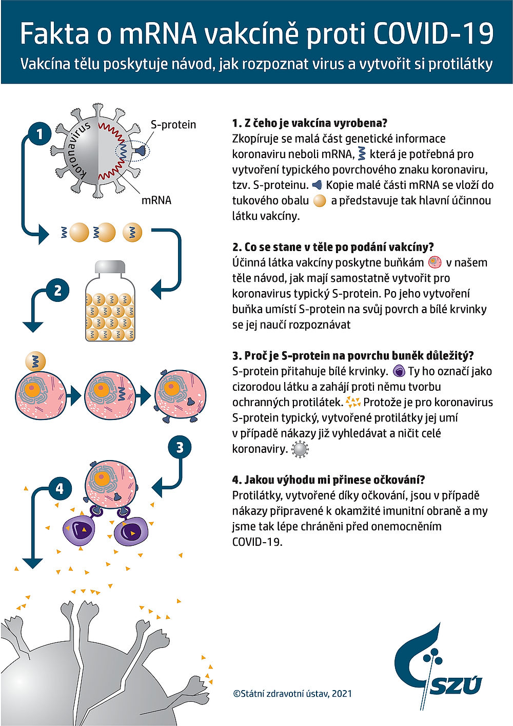 fakta o mRNA vakcíně proti COVID-19